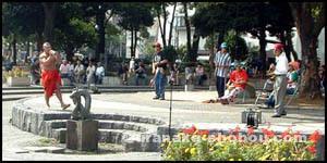 「横浜カーフリーデー2005」演奏風景1
