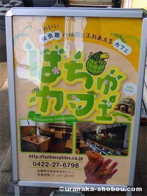 吉祥寺「はちゅカフェ」看板